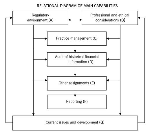 AAA高级审计与认证业务-Echo Wang(2019年)_基础学习班_课程
