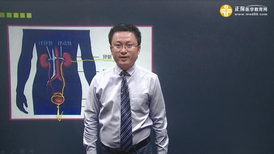 临床执业-泌尿系统